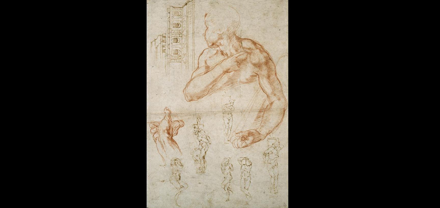 Michelangelo's studies by Michelangelo Buonarroti