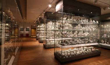 EUROPEAN CERAMICS Gallery at the Ashmolean Museum