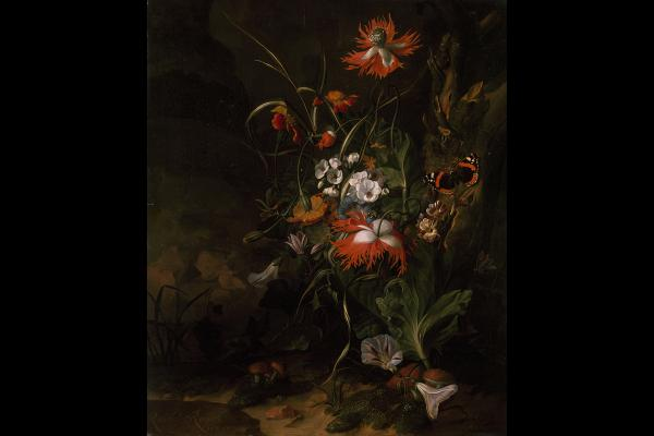 A 'Forest Floor' Still Life of Flowers by Rachel Ruysch