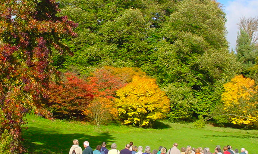 A view of red, brown and green trees at Batsford Arboretum in the Costswolds, Oxfordshire