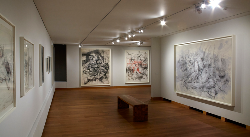 jenny saville at the ashmolean 2015 gallery view